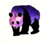 PurplePanda